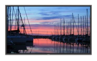 Monitor interaktywny 4K pojemnościowy Newline NAOS TT-7519IP
