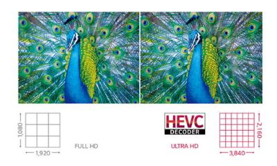 monitor interaktywny LG 65 cali 4K